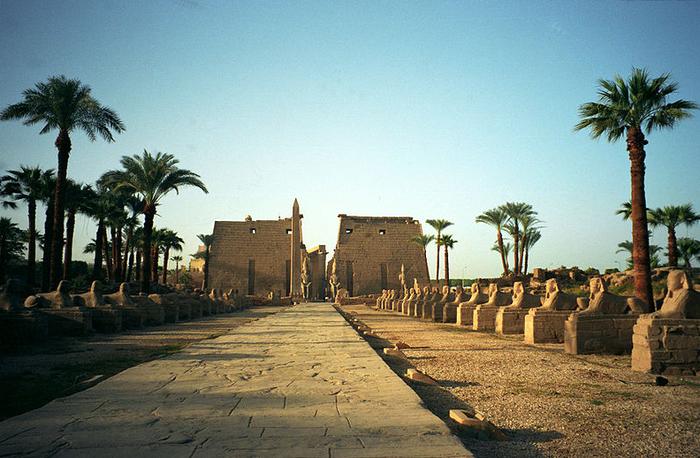 Alej sfing v Luxoru