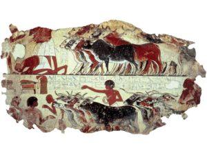 V Egyptě se počítalo všechno, ale zvláštní pozornost byla věnována dobytku