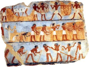 Malba z Onsuovy hrobky zachycuje jednotlivé etapy sklizně.