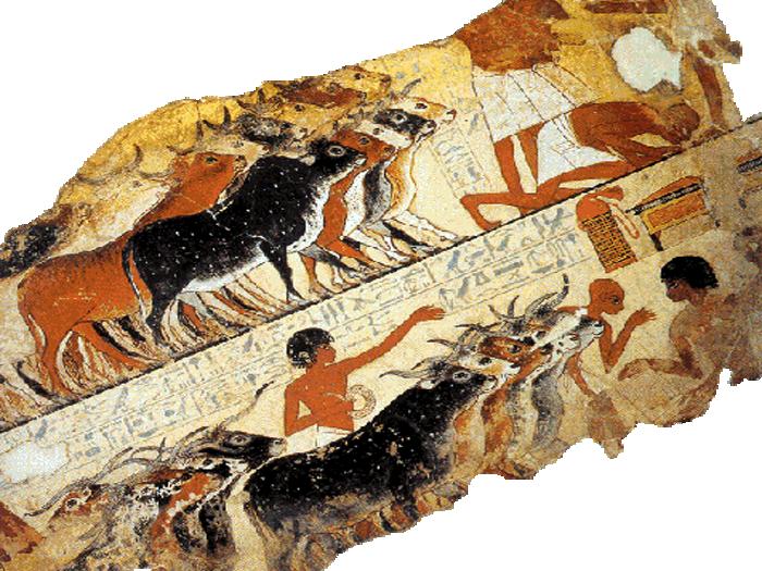 Písaři zaznamenávali na papyrus počet kusů ocejchovaného dobytka