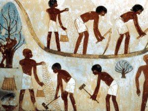 Výjevy ze sklizně - Senniho hrobka