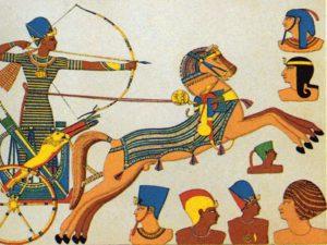Vůz byl lehký a táhli ho dva koně, které ovládal vozka. Voják měl dostatek prostoru na boj s lukem nebo kopím.