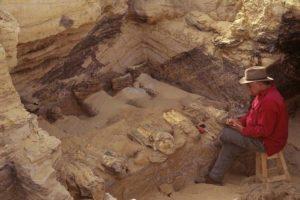 Západní poušť - oáza Bahríja; Autor: Kenneth Garret (National Geographic)