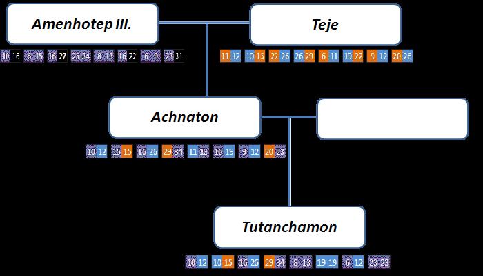 Analýza DNA – Amenhotep III., Teje, Achnaton, Tutanchamon