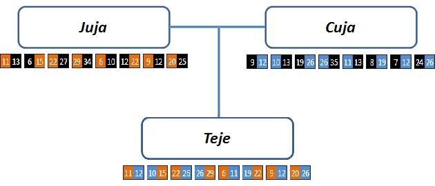 Rodiče Tutanchamona, Analýza DNA – Juja a Cuja